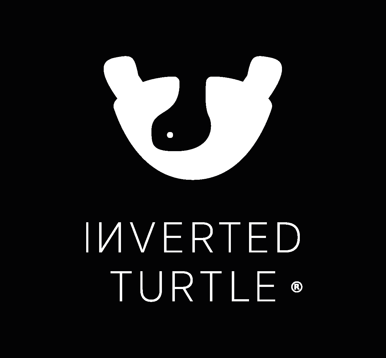Inverted Turtle