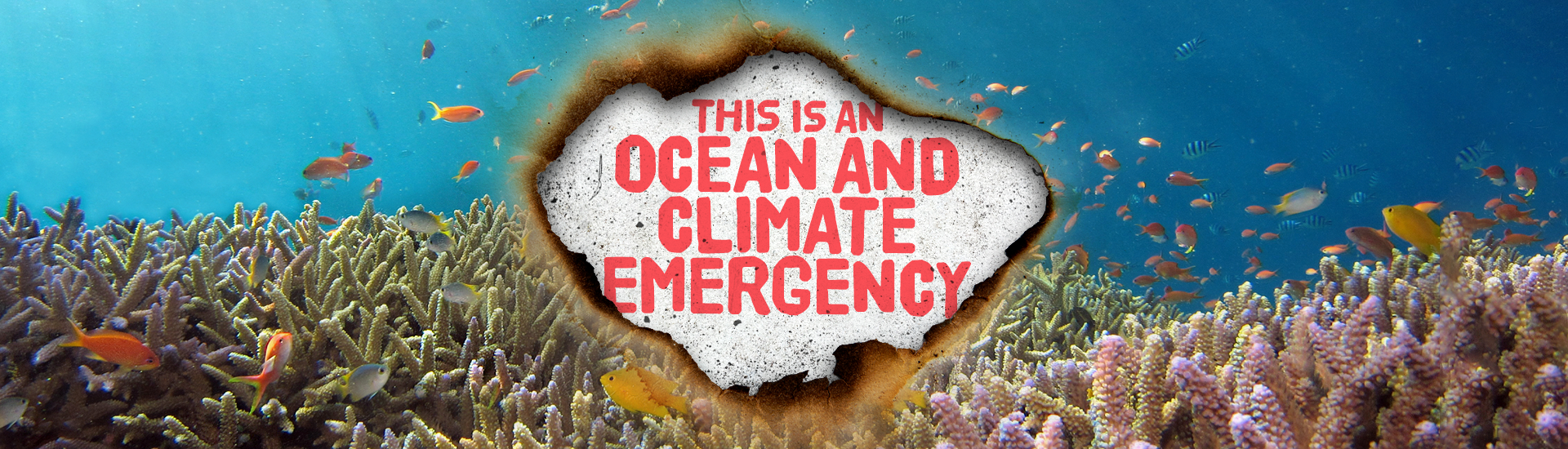 Ocean and Climate Petition