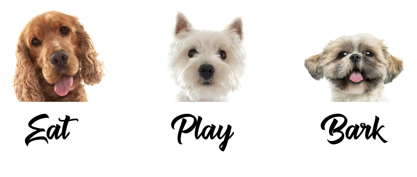 Eat Play Bark