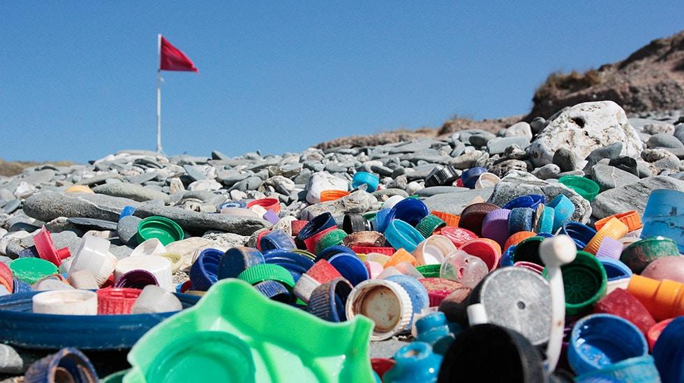 Marine Litter • Surfers Against Sewage