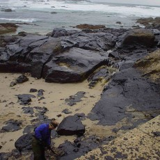 Torrey Canyon oil spill