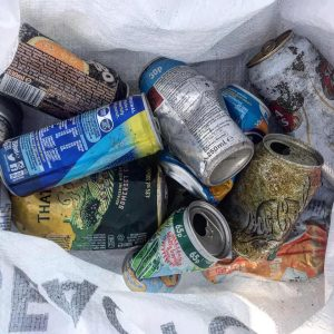 Cans from a beach clean